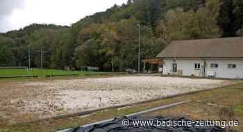 Initiative für Bolzplatz in Ober-Eichsel - Rheinfelden - Badische Zeitung