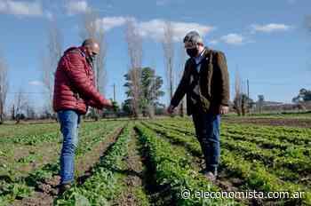 Buscan incrementar en Brasil la presencia de alimentos producidos en Buenos Aires - El Economista
