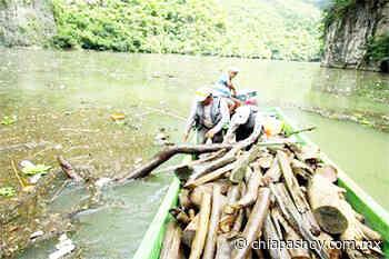 Realiza Protección Civil Chiapas limpieza en el Cañón del Sumidero » Diario Chiapas Hoy - Chiapas Hoy