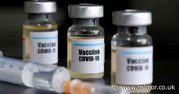 Oxford coronavirus vaccine 'doing everything expected' study finds