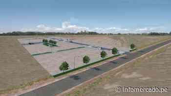 Los Algarrobos de Piura: proyecto ofrece casas a S/448 mensuales durante 2 años - Infomercado