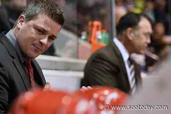 Diligence helps Keefe rise through coaching ranks - SooToday