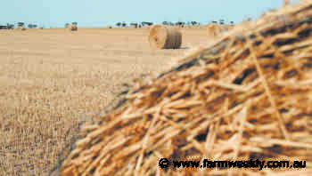 Soil nutrients a factor for hay cutting