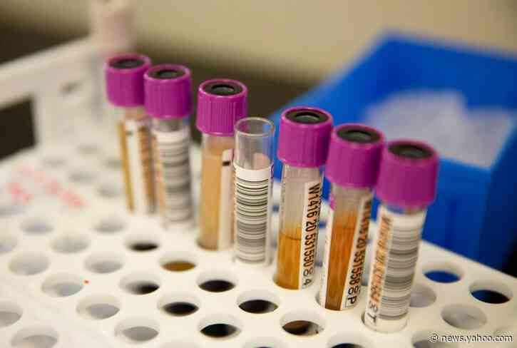 Blood of recovered COVID-19 patients shows little benefit as treatment