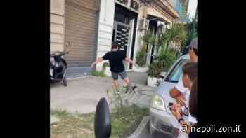 Gatto ucciso: identificati i ragazzi, ce n'è uno di Casalnuovo - Napoli ZON - Napoli.zon