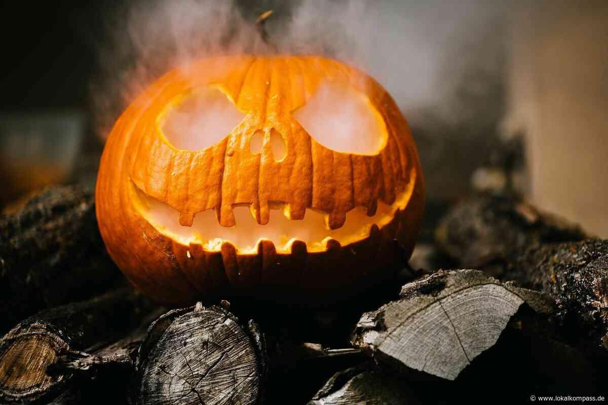 Gruselig-schöner Bastelspaß: Zeigt her Eure Halloween-Kürbisse! - Lokalkompass.de