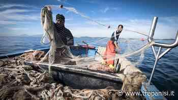 Impossibile trasferire il pescato da Marettimo a Trapani, i pescatori chiedono aiuto - Trapanisi.it