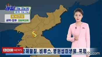 Coronavirus: North Korea warnings over 'yellow dust coming from China' - BBC News