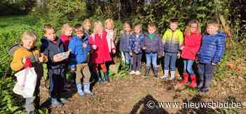 Leerlingen eerste leerjaar trokken op bosklassen