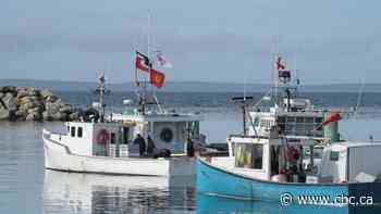 Fisheries minister says rep to foster dialogue between Mi'kmaw, other fishermen coming soon - CBC.ca