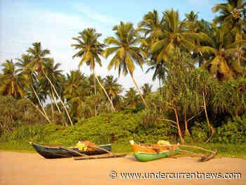 Vietnam to assist Sri Lanka in fisheries, aquaculture development - Undercurrent News