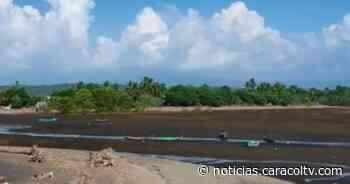 Frenan construcción del puerto de Tribugá en Nuquí: comunidad y ambientalistas celebran - caracoltv.com