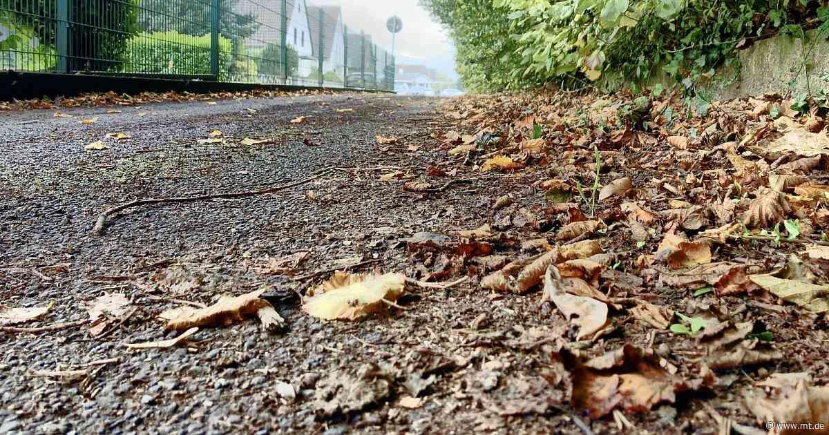 Straße in Neesen wuchert weiter zu: Anwohner fühlen sich alleingelassen | Porta Westfalica - Mindener Tageblatt