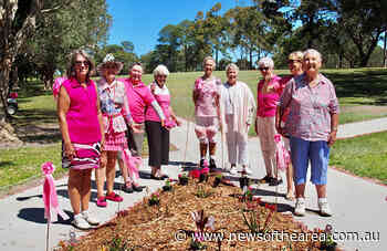 Sawtell Ladies Turn Golf Course Pink For Breast Cancer Fundraiser - News Of The Area