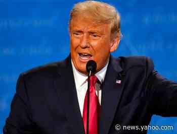 President Donald Trump said wind turbines kill 'all the birds.' Cats and radio towers kill far more.