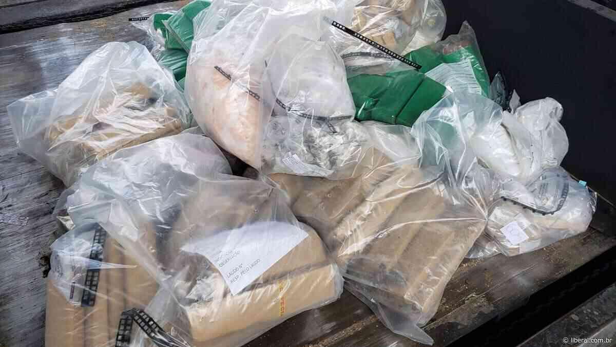 Dise de Limeira incinera mais de 300 quilos de drogas em Nova Odessa - O Liberal