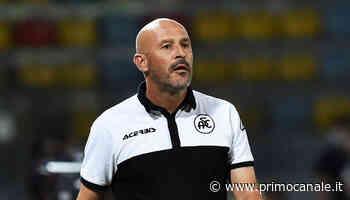 Spezia a Parma a viso aperto, per ripetere il colpaccio di Udine - Primocanale