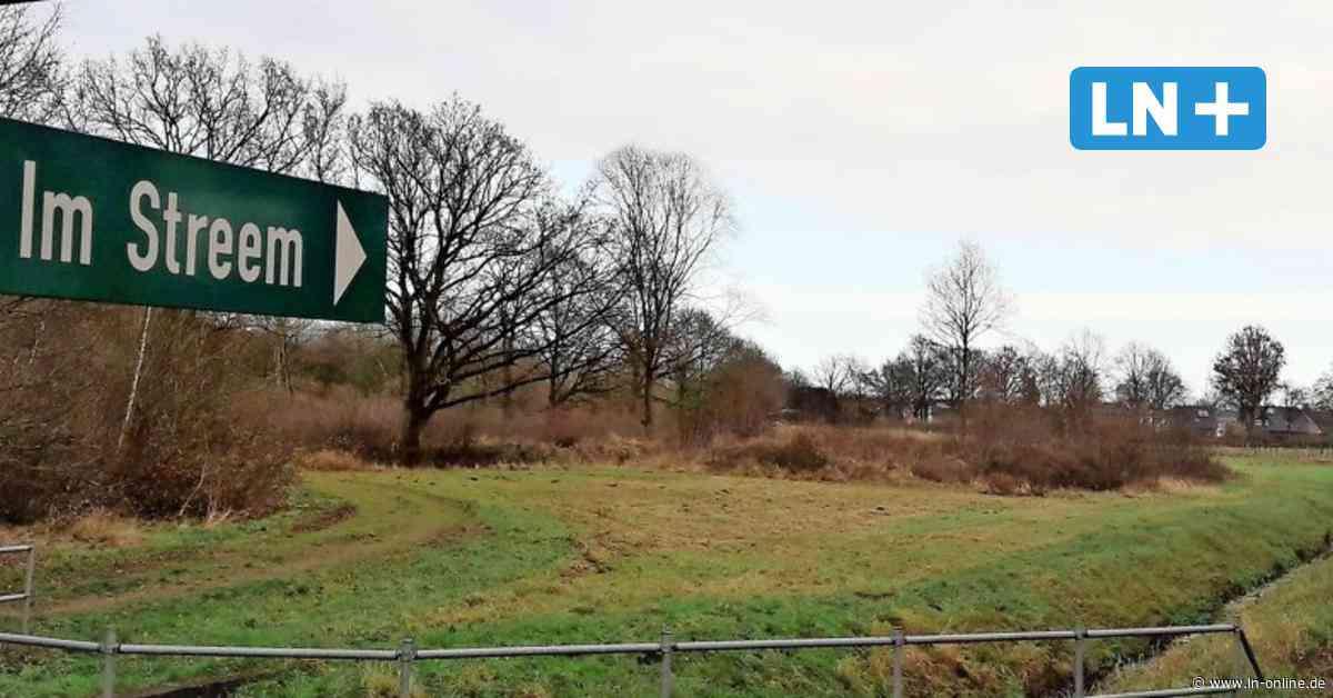 Wohngebiet oder Bürgerpark: Grüne in Wahlstedt wollen Bürgerentscheid - Lübecker Nachrichten