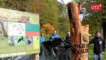 Nahe der Saale bei Hirschberg gibt es jetzt einen Urwaldpfad - Ostthüringer Zeitung