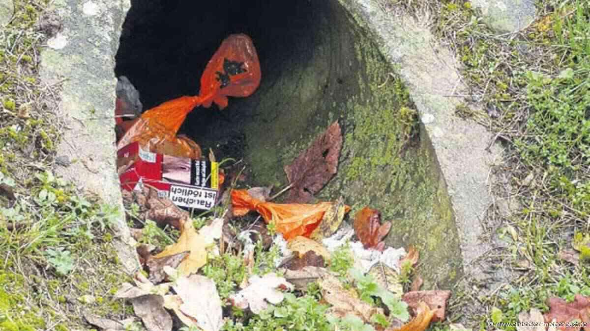 Einbeck putzt sich raus« am 30. Oktober - Einbecker Morgenpost