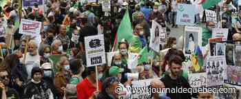 En France, la diaspora algérienne entretient la «flamme du Hirak»