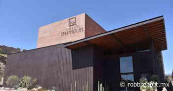 Viñedos San Miguel: así es el viñedo más grande de Guanajuato que acaba de abrir sus puertas - Robb Report Mexico