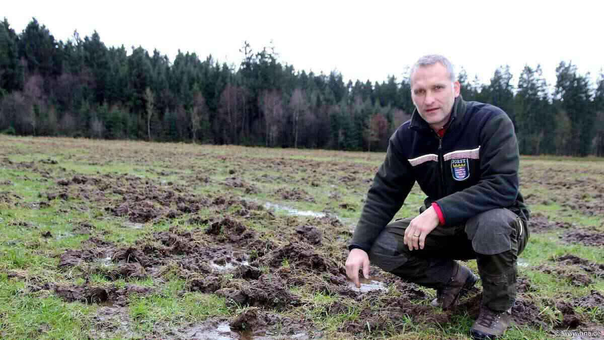 Trainer Arnd Kauffeld im Derby mit Gensungen gegen Baunatal wieder nur Außenseiter - hna.de