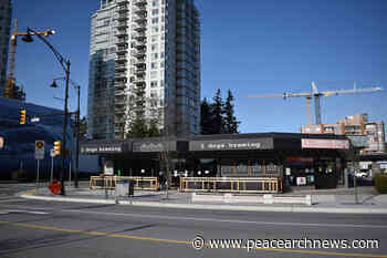 Civic centre could be part of new 23-storey White Rock condo tower - Peace Arch News