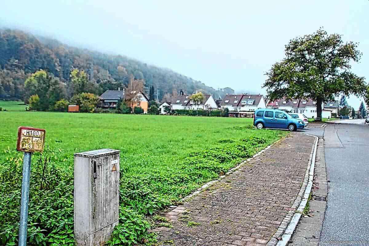 Steinen: Grundstückspreise rauben den Atem - Steinen - www.verlagshaus-jaumann.de