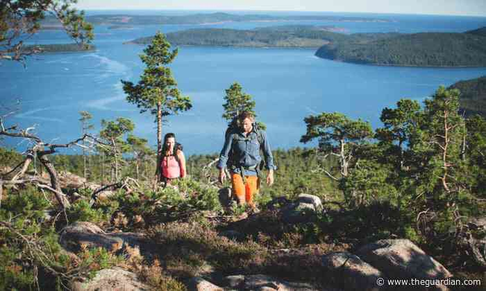 Log cabin lunches and wolf tracker tours: a nature lover's guide to roaming Sweden