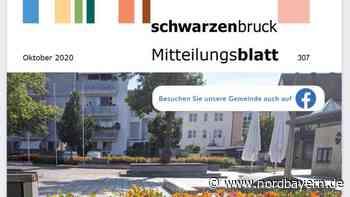 """""""Hallo Meinung"""" sorgt in Schwarzenbruck weiter für Unruhe - Nordbayern.de"""