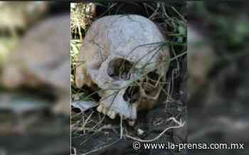 Encuentran craneo humano en lote baldío junto al Río de los Remedios - La Prensa