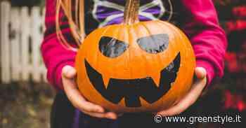 Halloween, campo di zucche magiche in Provincia di Lecco - GreenStyle