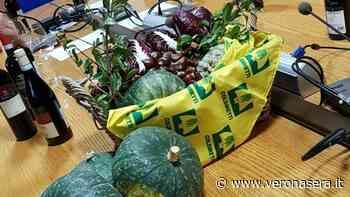 """Zucca, castagne e radicchio, con Bardolino e Chiaretto, nei menù dei """"Ristoranti tipici"""" - VeronaSera"""