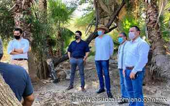 Autoridades loretanas buscan sustentabilidad de el Oasis de San Javier - El Sudcaliforniano