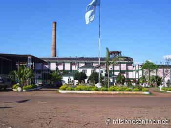 El Ingenio Azucarero de San Javier permanecerá cerrado preventivamente, aunque continúa con la producción y entrega de alcohol a centros de salud - Misiones OnLine
