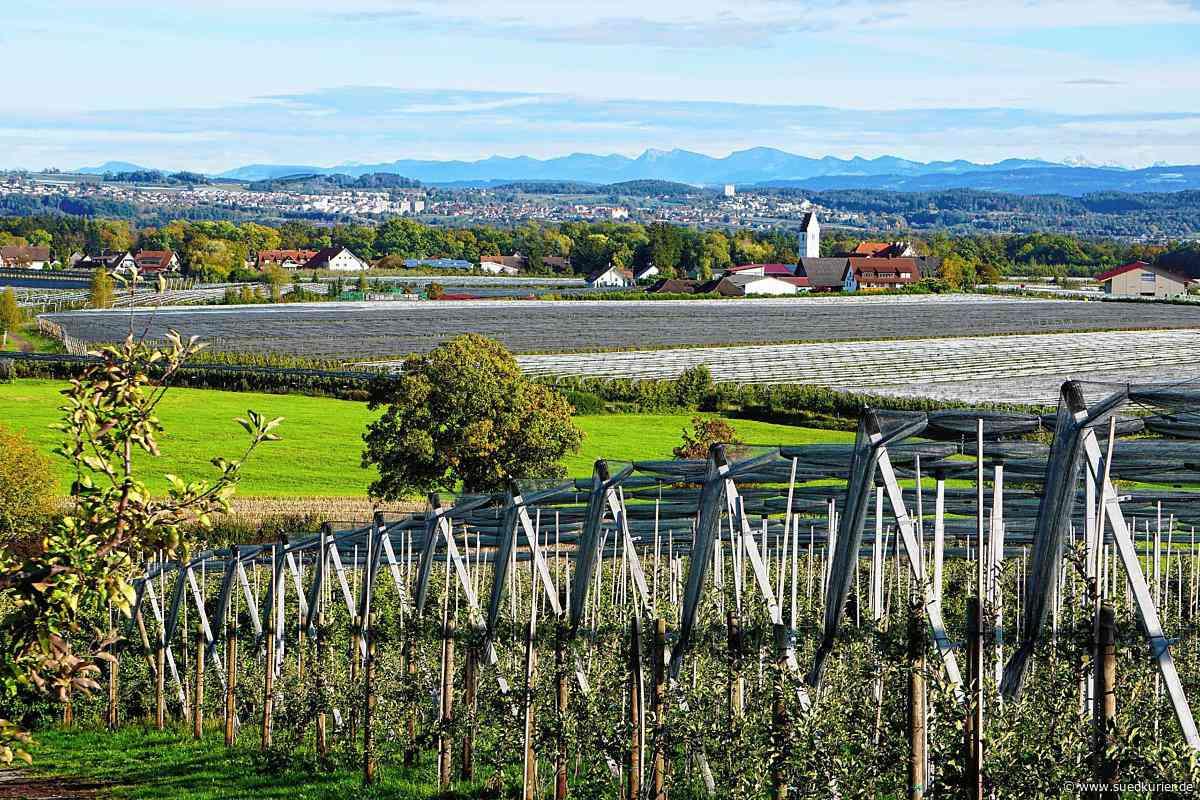 Friedrichshafen: Es bleibt dabei: 30 Hektar in Hirschlatt könnten Gewerbefläche werden - SÜDKURIER Online