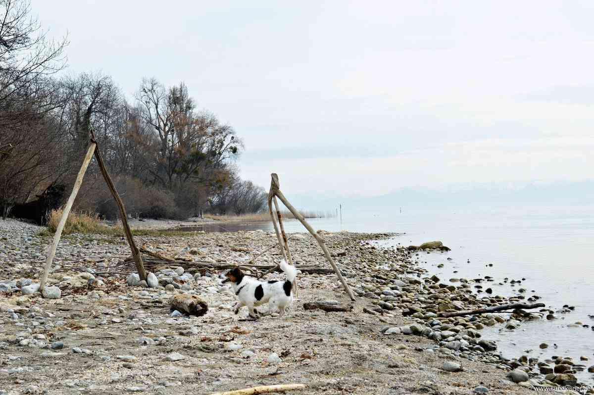 Friedrichshafen/Immenstaad: Herbstferien daheim? Langeweile muss da nicht aufkommen - SÜDKURIER Online