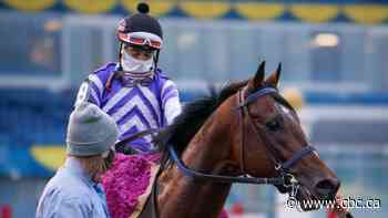 Belichick captures Breeders' Stakes to deny 1-eyed Mighty Heart the Canadian Triple Crown