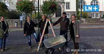 Blumenampeln vom Bürgerverein verschönern Bad Schwartau - Lübecker Nachrichten