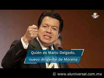 Mario Delgado vence a Muñoz Ledo; así es el nuevo hombre fuerte de Morena - El Universal