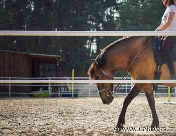 Équitation pour les vacances de la Toussaint lundi 26 octobre 2020 - Unidivers