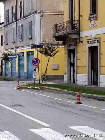 Magenta/via Novara. Alberi pericolanti che gridano vendetta - Ticino Notizie