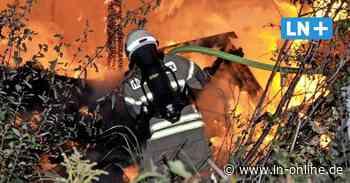 Lübeck: Mehrere Gartenlauben brennen nieder – War es Brandstiftung?