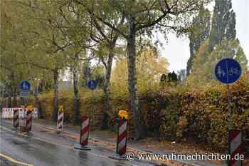 Drei Verkehrsschilder, drei Bedeutungen: Chaos am Südring in Werne - Ruhr Nachrichten