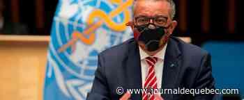 Le chef de l'OMS met en garde contre le «nationalisme vaccinal»