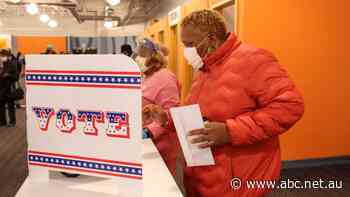 Ulont waited two hours in freezing temperatures to cast her ballot against Trump. Here's why millions of Americans are voting early
