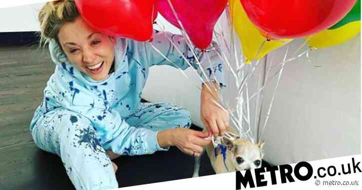 The Big Bang Theory star Kaley Cuoco marks end of quarantine by tying balloons to dog Dumpy in fun photo
