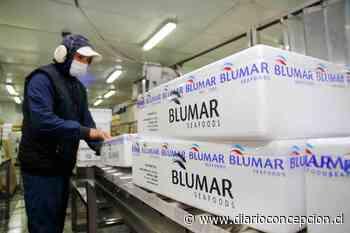 Talcahuano: Blumar busca ampliar su planta de Isla Rocuant con $ 3 mil millones - Diario Concepción