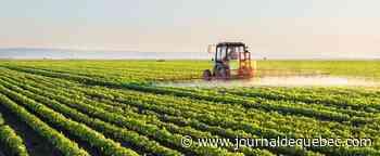 Plan d'agriculture durable: satisfaction des Producteurs de grains du Québec
